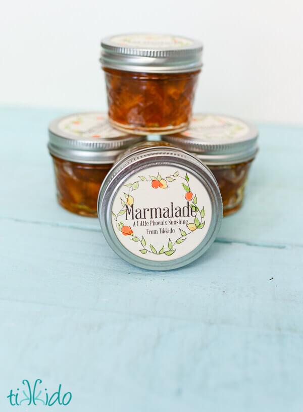 Marvelous Homemade Marmalade Recipe and Tutorial