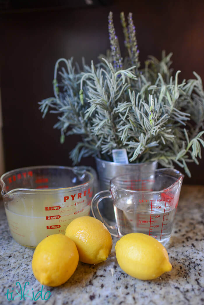 Lavender Infused Lemonade Recipe and Tutorial | Tikkido.com