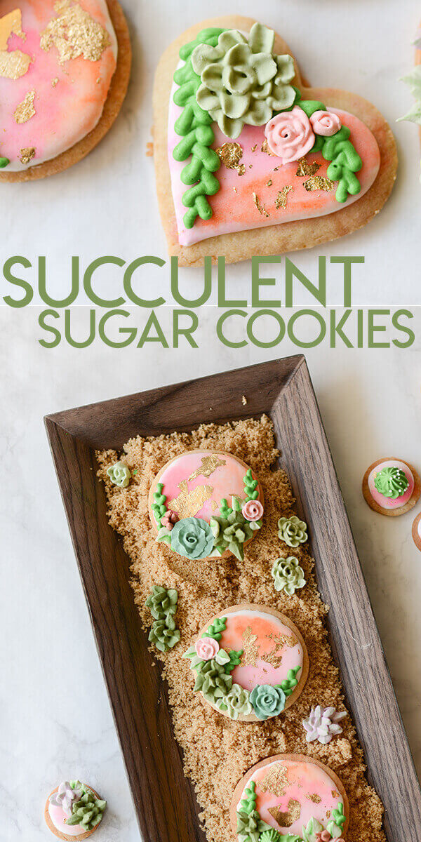 collage of succulent sugar cookies optimized for pinterest