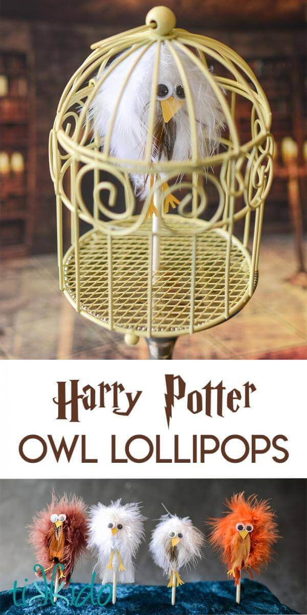 Lollipops that look like feather covered owls for a Harry Potter party.