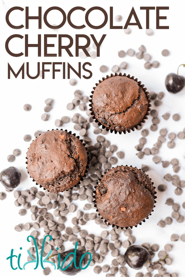 Three chocolate cherry muffins surrounded by chocolate chips and fresh cherries.