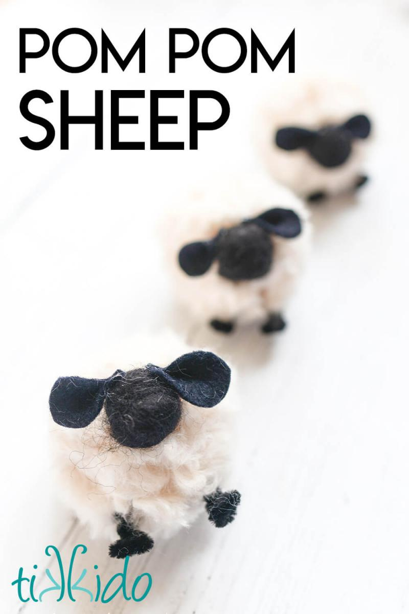 "Three pom pom sheep in a row, with a text overlay reading ""Pom Pom Sheep."""