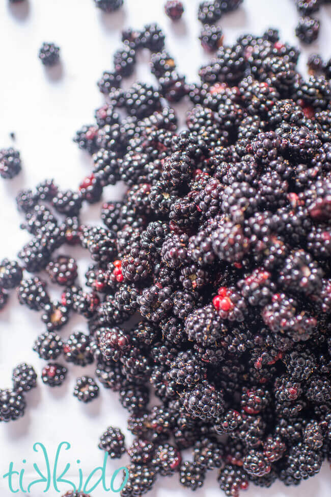 Pile of freshly picked wild blackberries on a white marble surface.