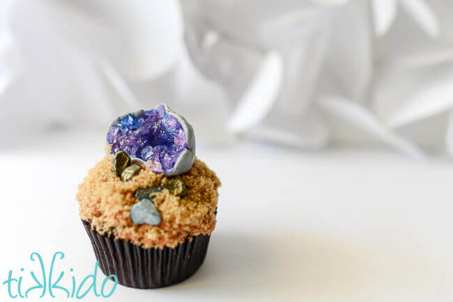 Cupcake topped with brown sugar dirt, chocolate rocks, and a gum paste and sugar crystal edible geode cupcake topper.