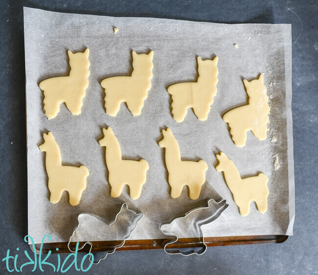 Sugar cookie dough rolled out on parchment and cut into llama and alpaca shapes.
