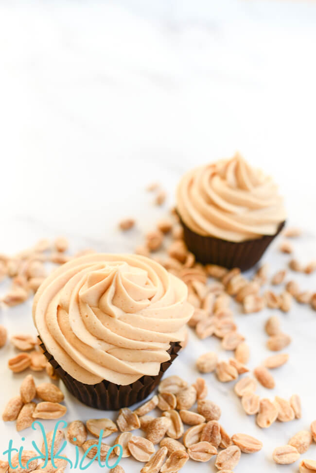 Two chocolate cupcakes with peanut butter frosting, surrounded by roasted peanuts.