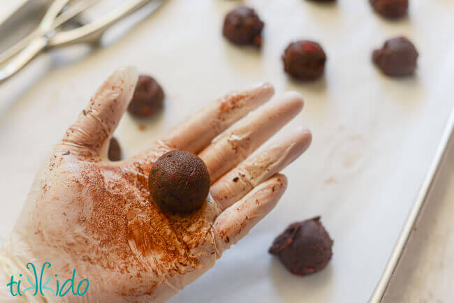 Food-save gloved hand holding a rounded chocolate raspberry truffle.