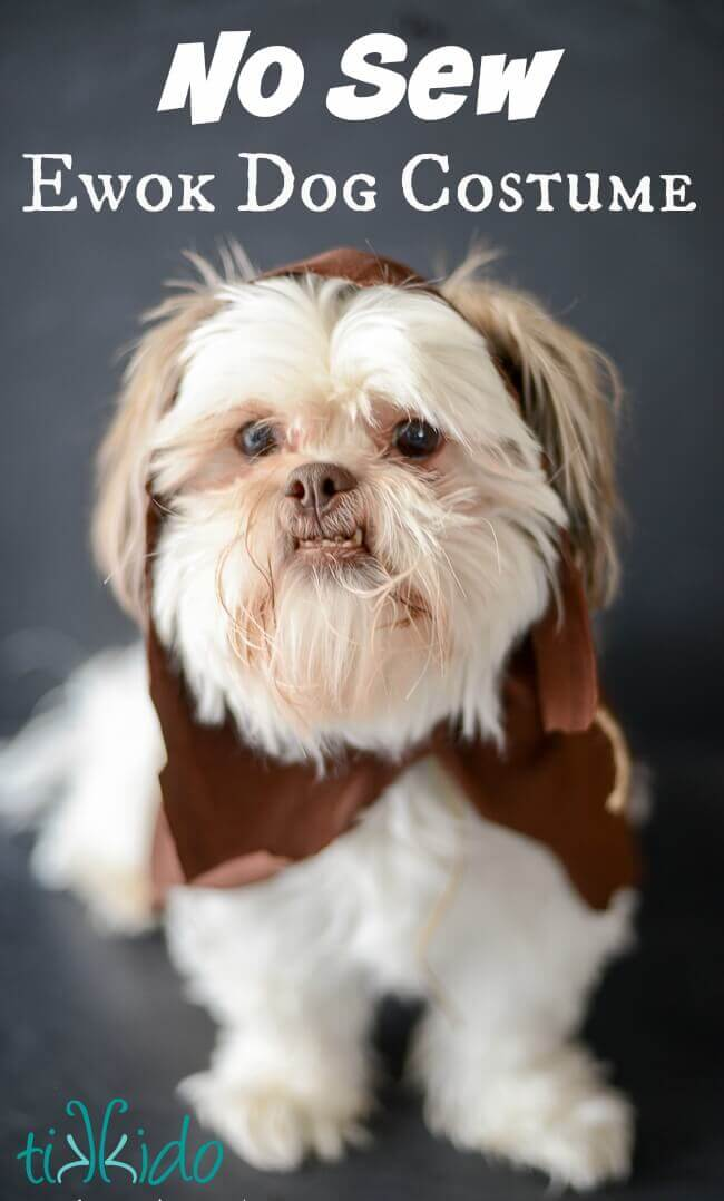 Easy ewok no sew dog costume tutorial tikkido i was always more of a star trek girl myself though i did enjoy the original star wars movies certainly and ive always thought our shih tzu dog murlin solutioingenieria Images