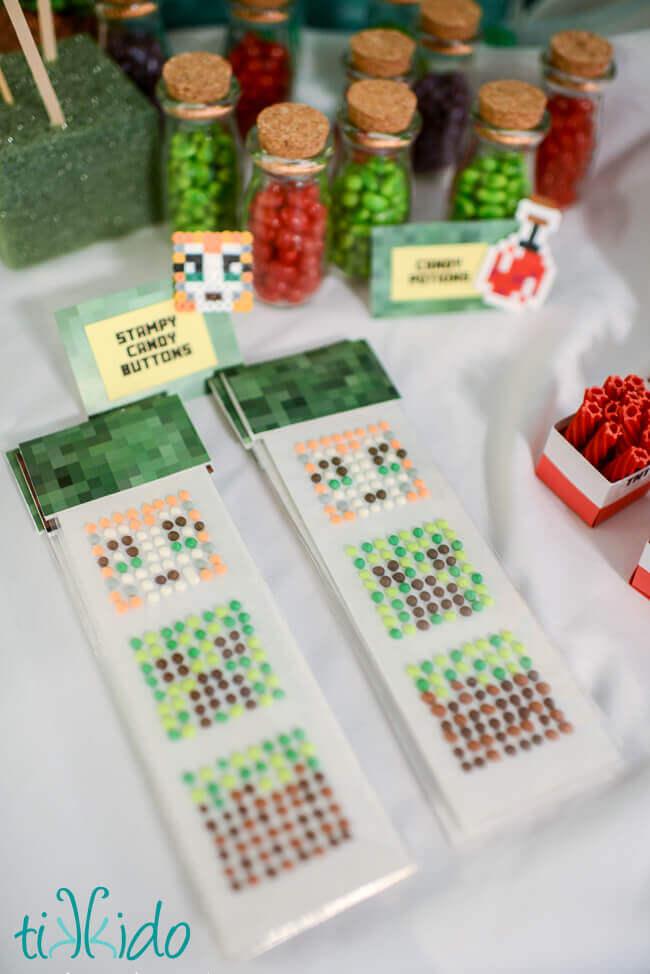 Minecraft Stampy Longnose Birthday Party Tikkido
