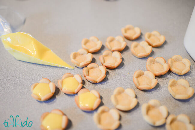 Flower shaped mini tart shells being filled with lemon curd from a clear pastry bag full of lemon curd.